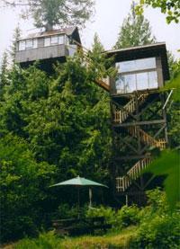 cedar creek treehouse - Cedar Creek Treehouse