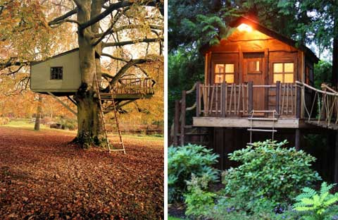 amazon-treehouse