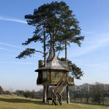 amazon treehouse - A Fairytale Treehouse