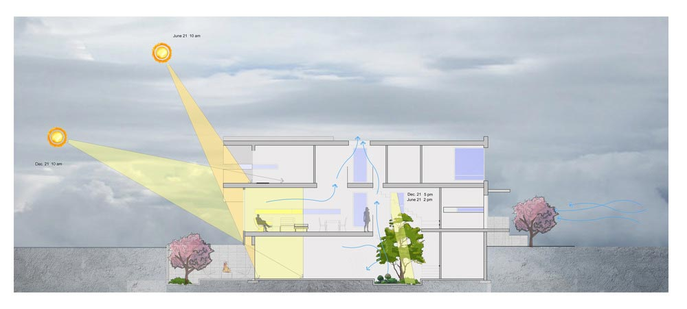 courtyard garden house plan ara - Garden Void House