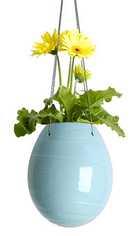 decorative planter egg - Egg Planters