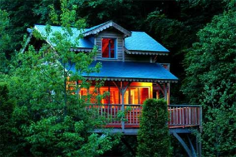 exceptional-treehouses-book-2