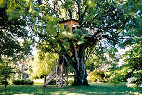exceptional-treehouses-book-3