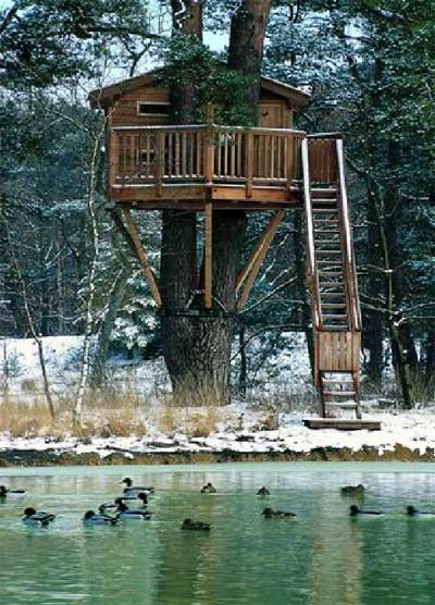 exceptional-treehouses-book-6