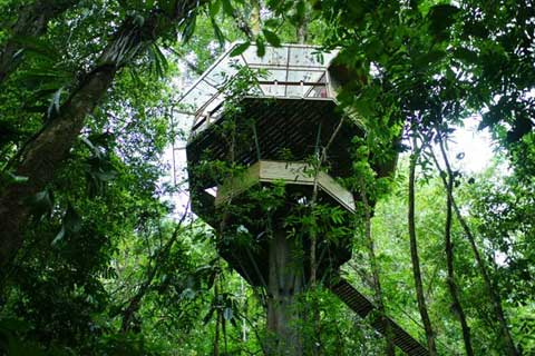 finca-bellavista-treehouse-1