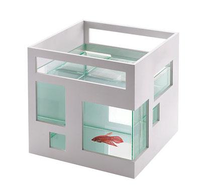 fish aquarium condo - Fish Condo