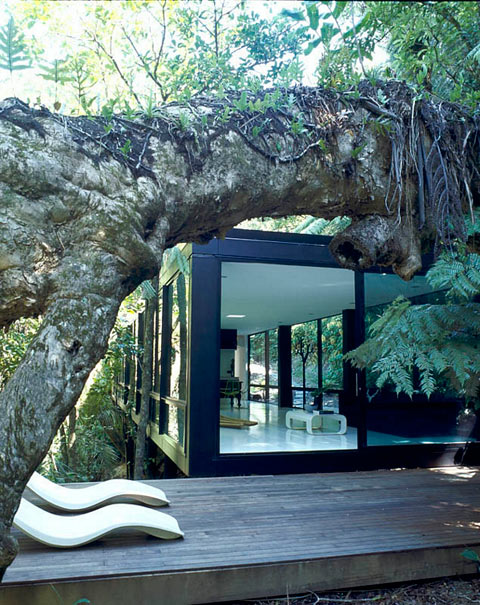 Chris tate s forest home into the wild modern architecture for Modern forest house design