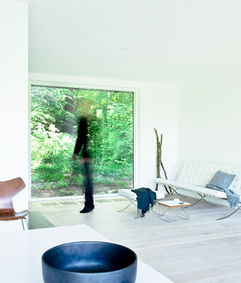 forest-house-design-na2