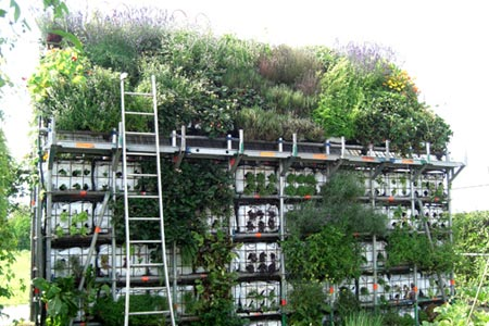 garden-shed-green-roof6