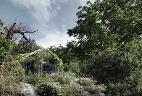 garden-shed-greenbox-10