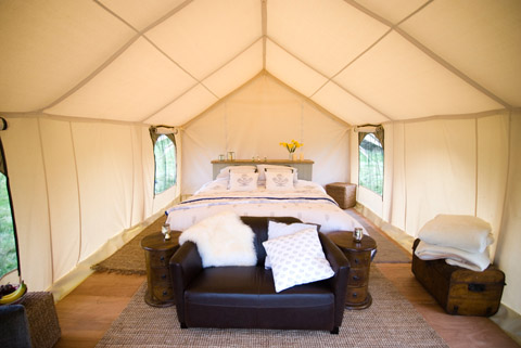 glamping-popup-hotel-4