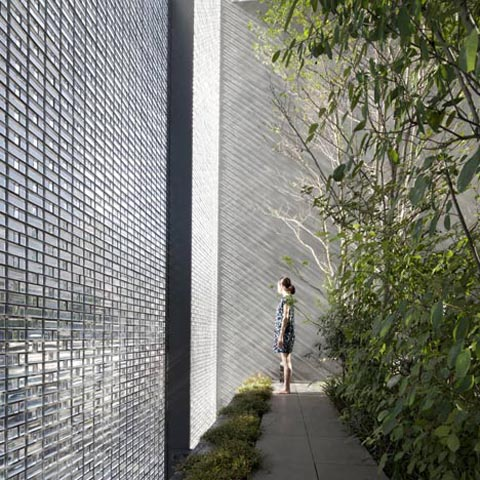 glass-wall-house-4