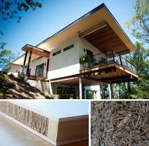 green-hemp-house