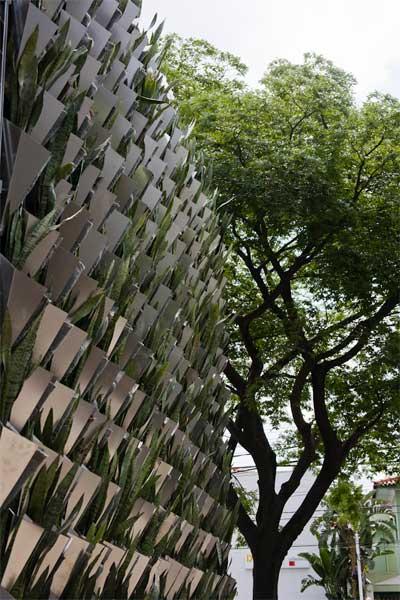 green-walls-firma-casa-6