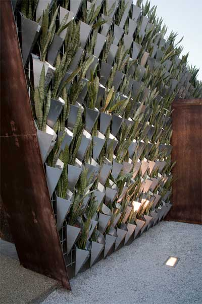 green-walls-firma-casa-7