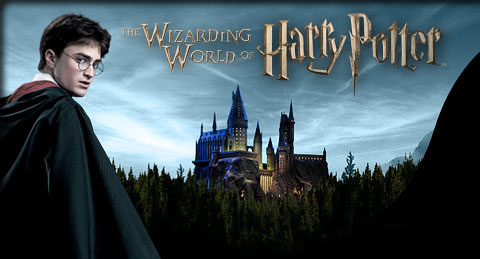 Wizard Games and Sports - World of Harry Potter