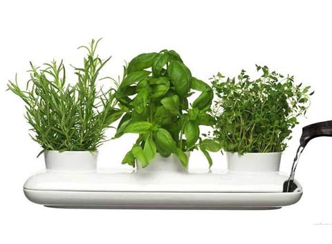 herb-garden-pot-sagaform-2