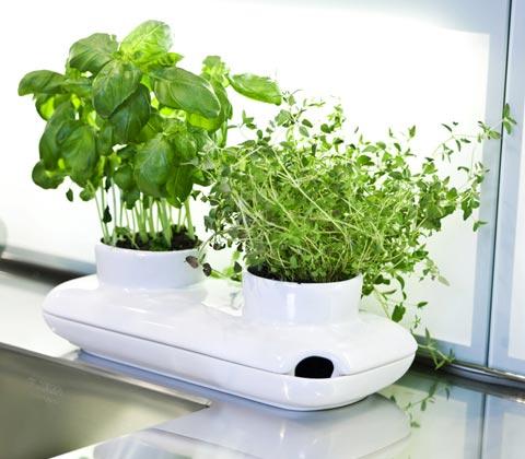 herb-garden-pot-sagaform