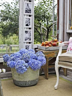home-decor-shed-makeover-5
