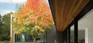 home interiors courtyard design prs 300x140 - Echo House