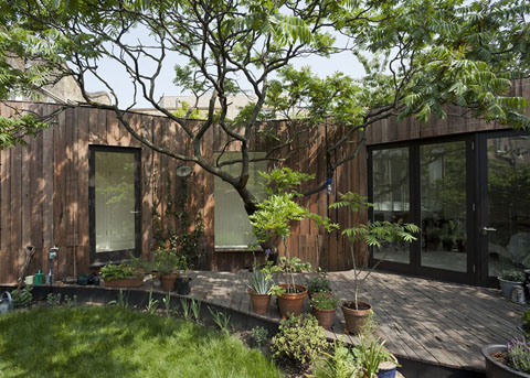 house-extension-tree-6a5
