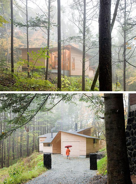 A tiny Cottage In The Woods