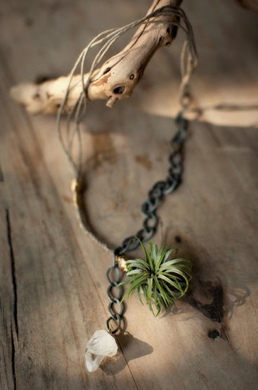 living jewelry viola 5 - Viola Living Jewels: botanical jewelry