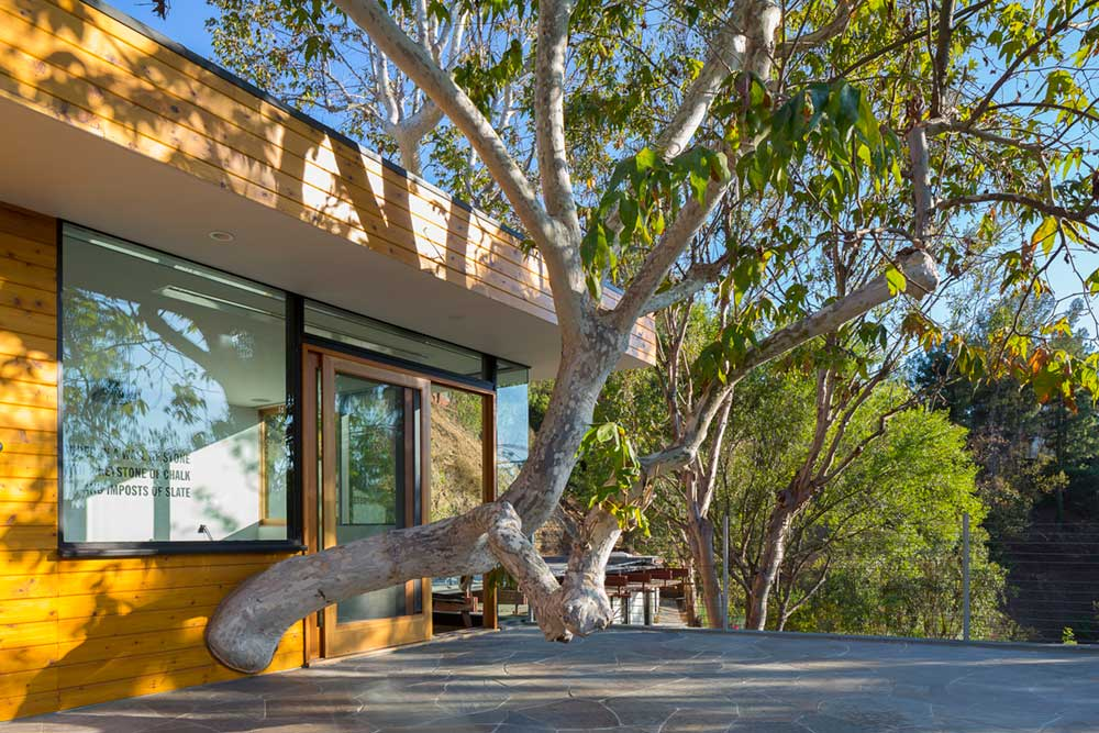 mid century modern home anx2 - Sycamore House