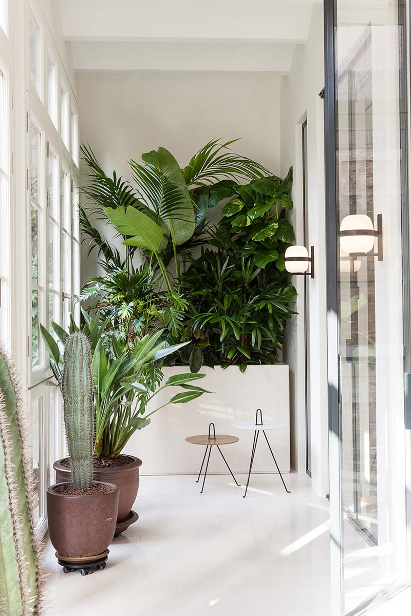 modern apartment design plants - Argentona Apartment