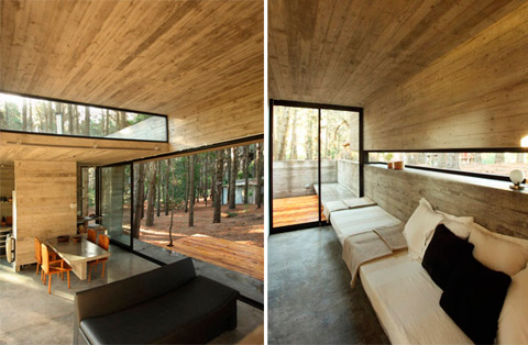 Casa Cher Concrete Glass And Pine Trees Modern Cabins