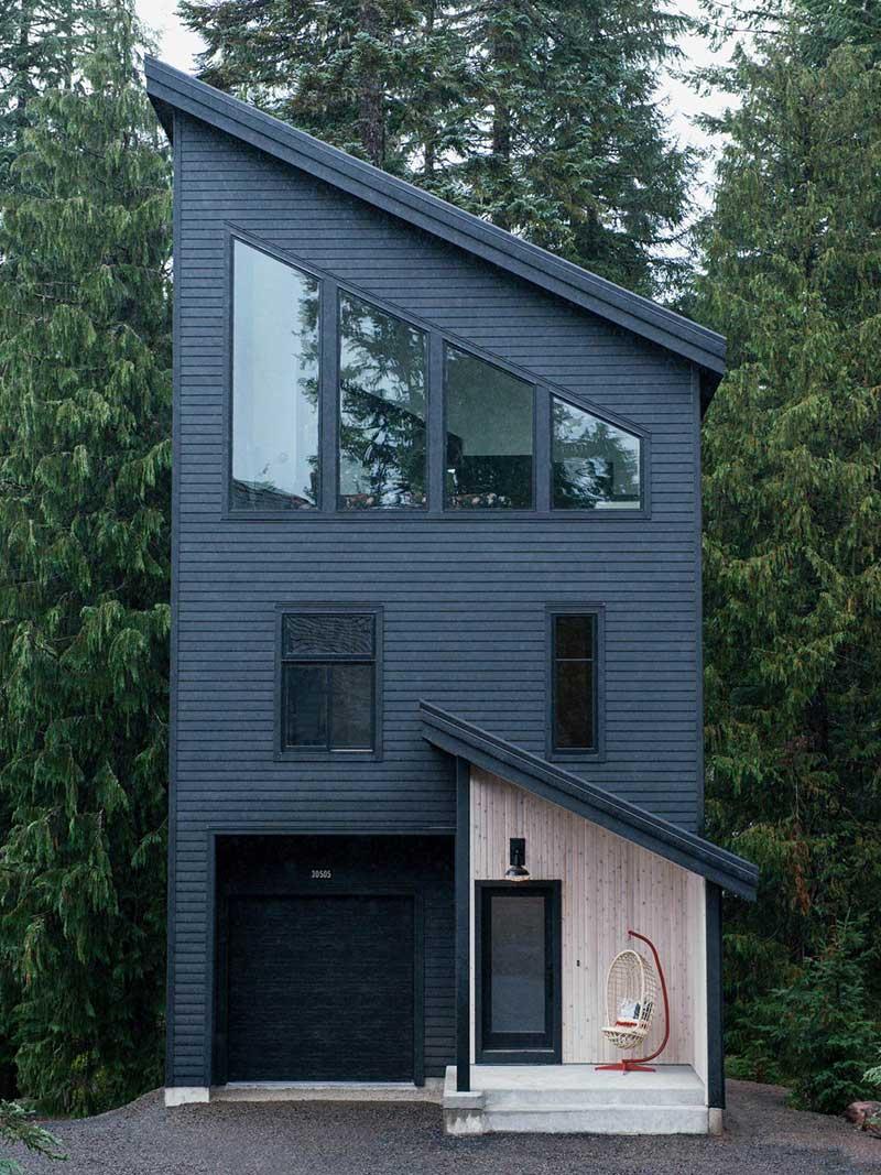 modern cabin design cw - Alpine Noir Chalet