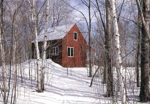 modern-cabin-practice-house-4