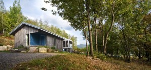 modern-forest-home-bta