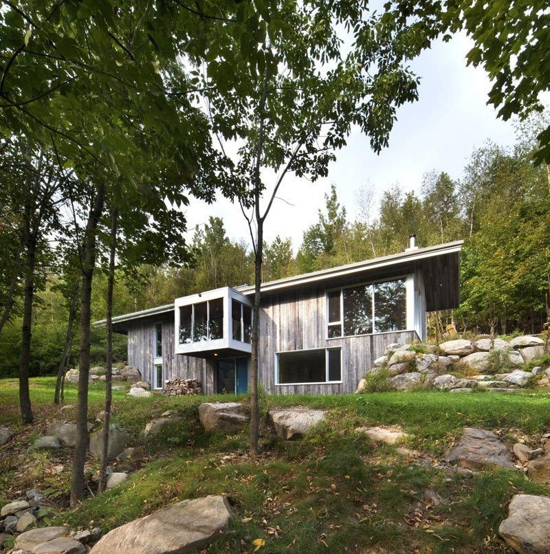 Modern Forest House: Modern Architecture