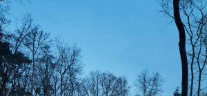modern forest villa mjolk 300x140 - Forest Villa