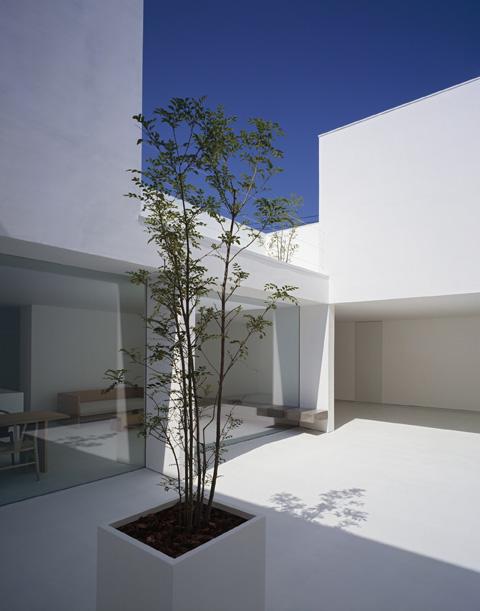 modern-house-white-cave4