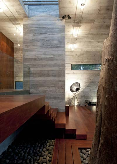 modern-interior-design-tree-3