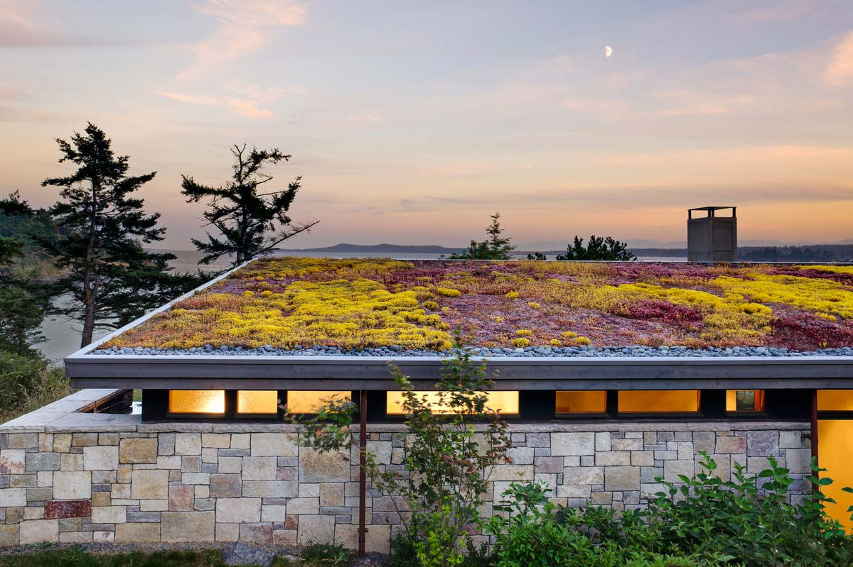 modern island cabin design green roof - North Bay Residence