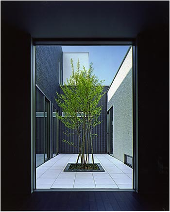 Japanese t house let there be light japanese architecture for Minimalist house with courtyard
