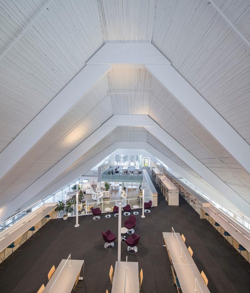 monique-corriveau-library12
