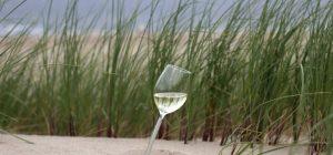 outdoor wine glass parqer 300x140 - Parqer Glass