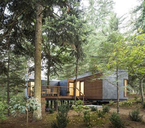 prefab-cabin-resort-ps4
