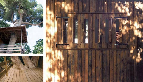 shipping-container-cabin-tree-4