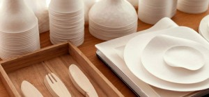 single-use-tableware-wasara