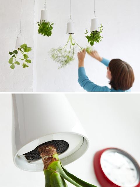 sky-planter-upside-down-3