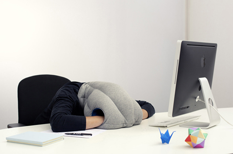 sleeping-pillow-ostrich3