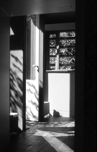 small extension flinthouse 5 - Flinthouse: a Tiny Annex