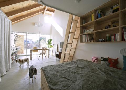 small-house-dogsalon5