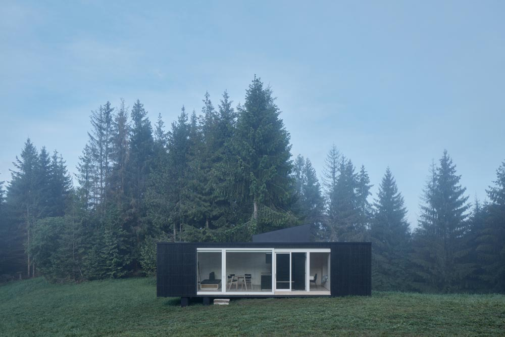 small modern cabin design facade - Into the Wild Cabin