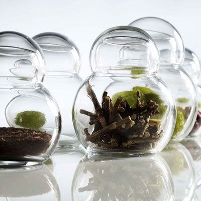 storage jars arabica - Arabica Storage Jars: a practical little work of art